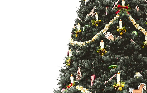 photo of a christmas tree