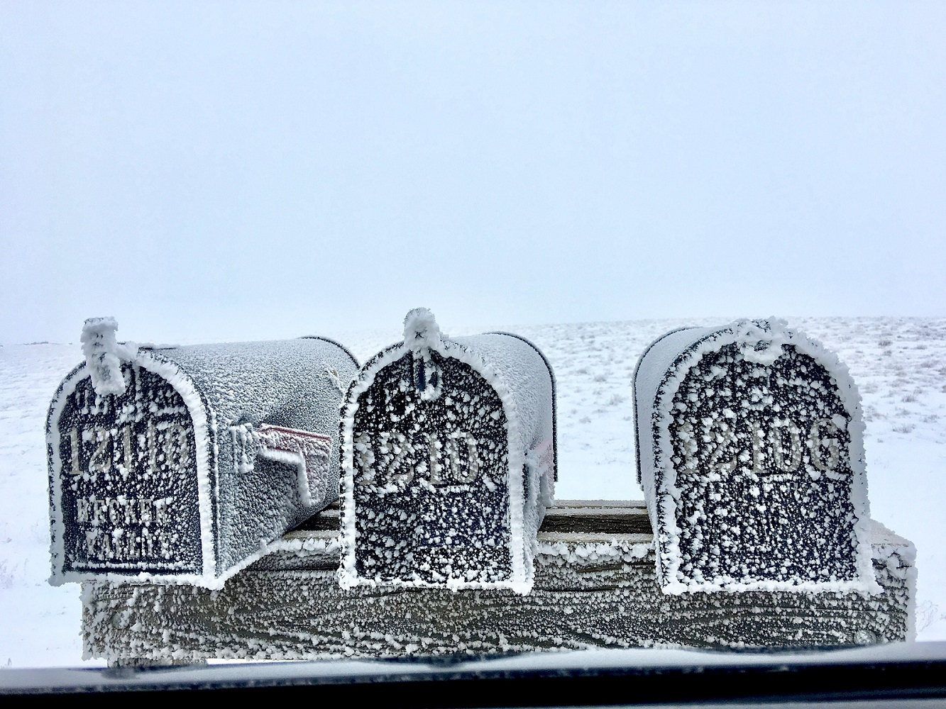 image of three mailboxes covered in snow